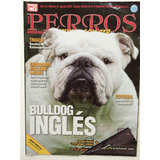 Revista Perros Pura Sangre Bulldog 3 Ediciones