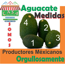Aguacate Hass Venta Mayoreo Somos Productores