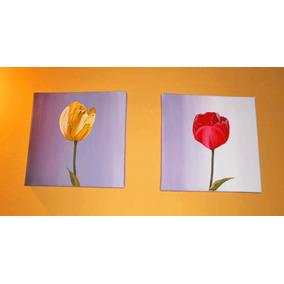 Cuadros Dipticos Tripticos Polípticos Florales En Oleo