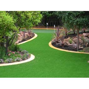 Sementes Da Melhor Grama P/ Jardim Folha Fina Frte Gratis