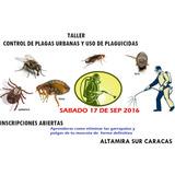 Curso Plagas Garrapatas Pulgas Cucarachas Ratas