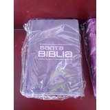 Mini Biblia Reina Valera 1960 Colores Modernos Canto Plata