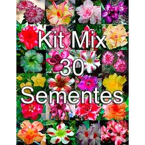 Kit Mix 30 Sementes Rosa Do Deserto Frete Grátis Todo Brasil