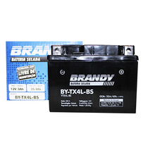 Bateria Yamaha Axis 90 Brandy Tx4l