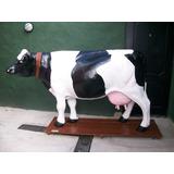 Carniceria Vaca De Plasticos