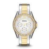 Reloj De Mujer Fossil Es3204 Riley 100% Original