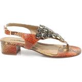 Sandália Zariff Shoes Animal Print Pedras | Zariff