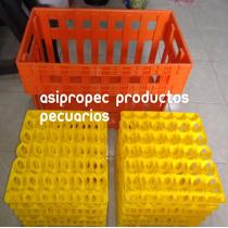 Charola Huevos 12 Pzs + Caja