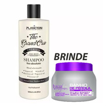 Plancton Shampoo Que Alisa Liso Absoluto 500ml + Banho 250g