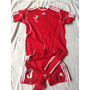 Juego Uniforme Adidas Climalite Rojo Niños Futbol 16 Jugador
