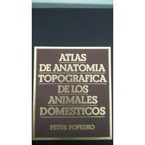 Atlas De Anatomia Topografica De Los Animales Domesticos. Pe