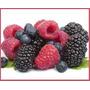 Frutos Rojos Congelados Iqf