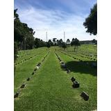 Lote Com Jazigo No Cemitério Parque Senhor Do Bonfim