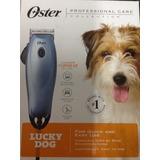 Oster Lucky. Dog