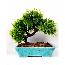 Arvore Bonsai Artificial Decorativa Vaso Cachepot Azul 28cm