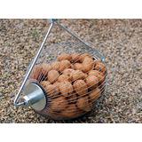 Recolector Manual De Nueces Made In Usa