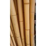 Vara De Bambu Tratado