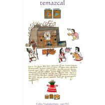 Lienzo Tela Códice Magliabecchiano Temazcal México Azteca