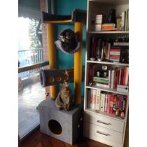 Arranhador/ Arvore - Savannah-cozy Gatos! Maine Coon Ragdoll