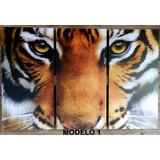 Cuadro Tigres Animales Etnicos Tríptico