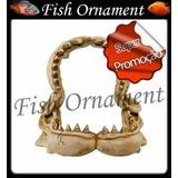 Soma 020115 Enfeite Resina Mandíbula Tubarão Fish Ornament