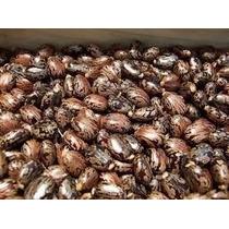 Semillas De Ricino (higerilla)