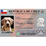 Carnet De Identidad Para Mascotas, Impresa En Pvc