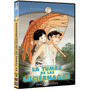 Dvd Anime La Tumba De Las Luciernagas Studio Ghibli Miyazaki