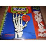 Excelente Libro Didáctico Sobre La Mano..the Hand Book