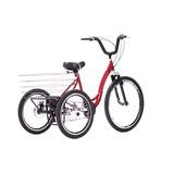 Bicicleta Triciclo Rebaixado Com Marchas E Freio À Disco