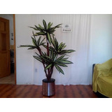 Planta Yuca Artificial Decorativa