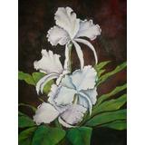 Cuadro Orquídeas - Óleo