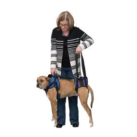 Arnes Para Perro Discapacitado , Parte Frontal Y Trasera