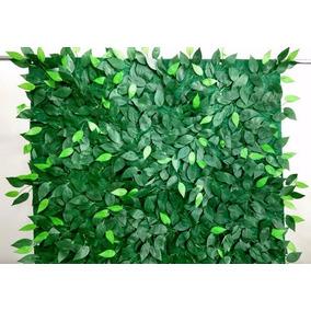 Muro Inglês Painel De Folhas De Fícus 2 X 0,50