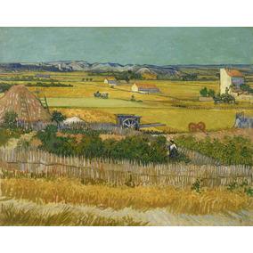 Lienzo Tela La Cosecha Vincent Van Gogh 50 X 63 Cm