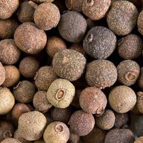 Mudas De Pimenta Da Jamaica