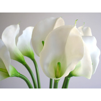 12 Copos De Leite Silicone - Flores Artificiais Artificial