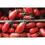 100 Semente De Tomate Italiano San Marzano + Frete Grátis