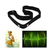 Cinta Tira Para Monitor Cardíaco Polar Ft40