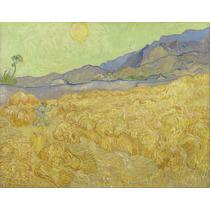 Lienzo Tela Campo De Trigo Y Segador Vincent Van Gogh Arte