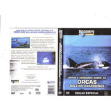 Dvd Orcas Baleias Assassinas - Discovery Channel, Original