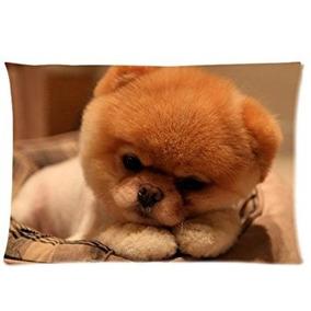 Boo El Perro Perro Mascota Almohada Personalizado Cubiertas