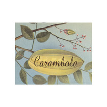 Carambola Frutas Tropicales Graphic Art On Wrapped Canvas