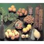 Malla Frutera Para Envasar Frutas Verduras Juguetes Combos