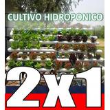 Aprende Hidroponia Cultivos Sembrar Hidroponicos 11