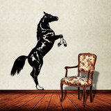 Adesivo De Parede Animais Cavalo Empinando Pequeno 42x63cm