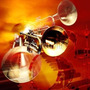 Maracas Salseras Msm4 Meinl Super Jumbo