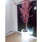 arbol flor de durazno con maceta