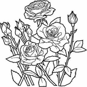 128 Desenhos Para Colorir - Anti Stress Para Todas As Idades