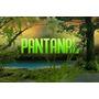 Dvd Novela Pantanal Completa Em 32 Dvds